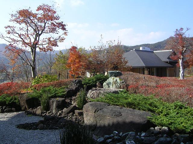 Free japan autumn landscape