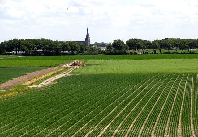 Free netherlands landscape fields crops farm rural
