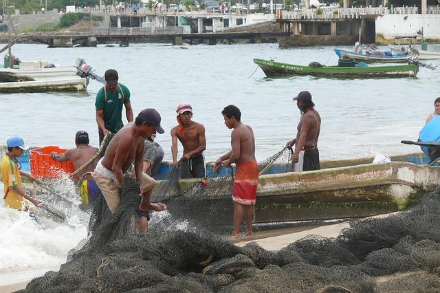 Free Photos: Acapulco ocean mexico pelikan the fisherman | Michał Lech