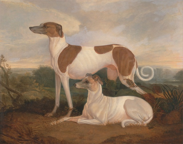 Free Photos: Charles hancock painting art oil on canvas dogs | David Mark