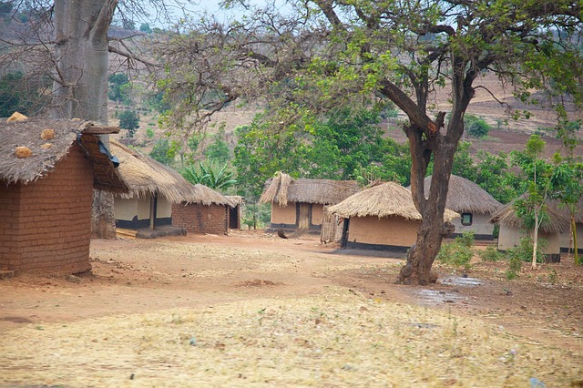Free malawi africa village huts homes thatched mud