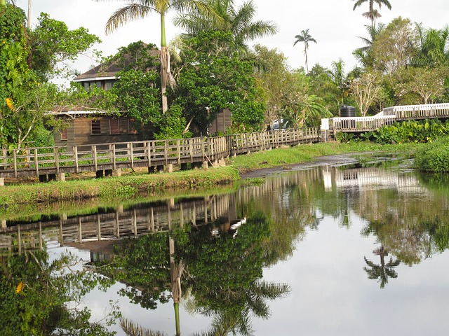 Free jamaica stream water reflections house home