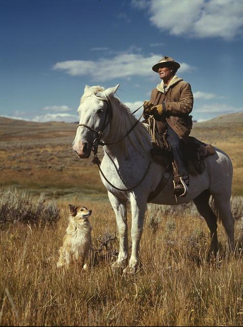 Free landscape 1942 sky clouds rancher man horse dog