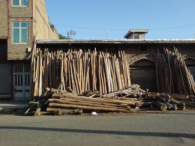 Free darwazeh iraq tree trunks buildings village summer