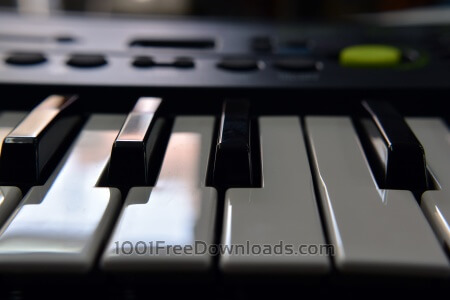 Free Piano close up