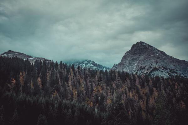Free Sebensee Summits