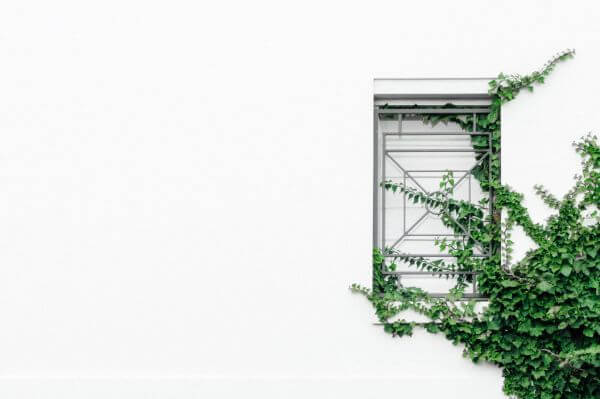 Free Overgrown