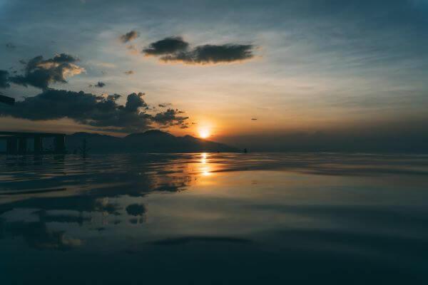Free Paradise