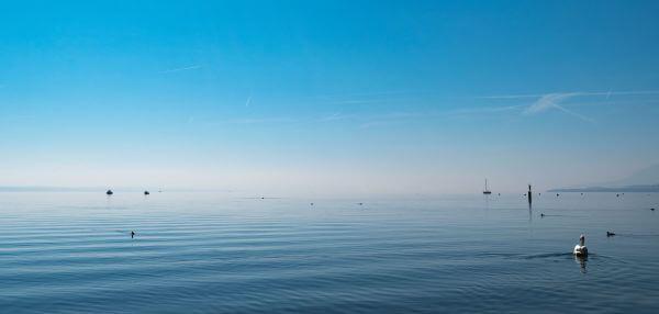 Free Neuchâtel