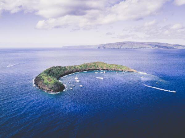 Free Maui