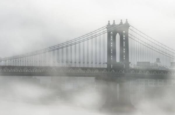 Free New York