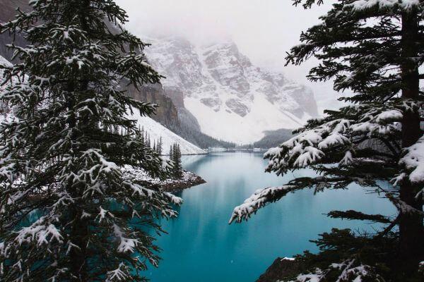 Free Lake Louise