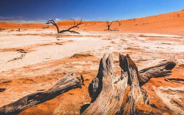 Free Sossusvlei Dunes