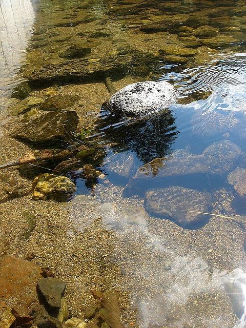 Free summer river stone sun mirroring jez