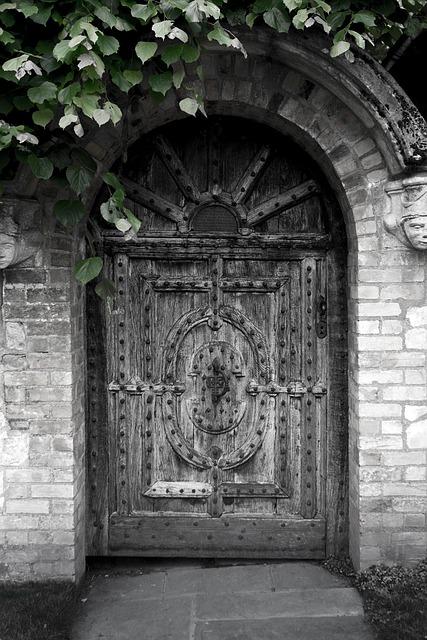 Free door oak door iron studs surface texture