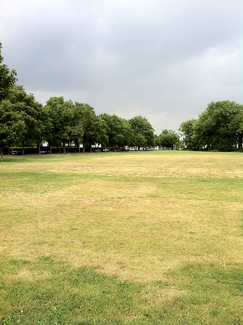 Free rush summer dry drought bolzplatz football pitch
