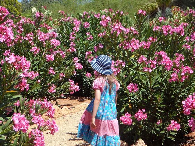 Free girl garden child run oleander mediterranean