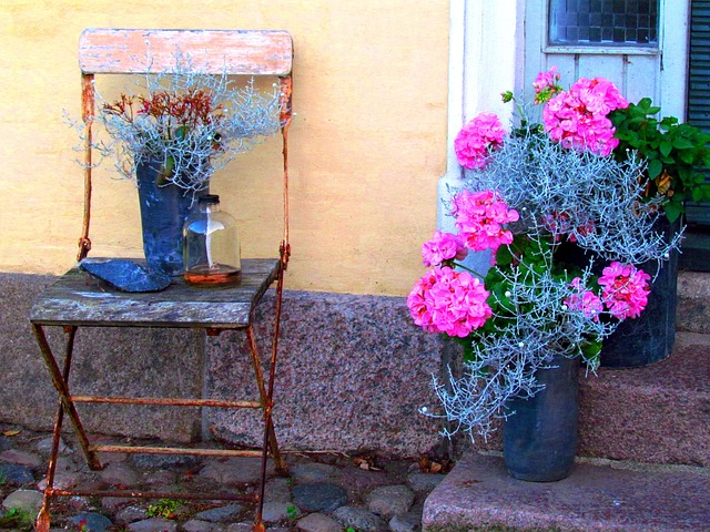 Free old chair flowers silent rest beautiful idyll