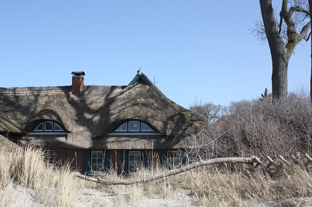 Free ahrenshoop thatched roof reed beach baltic sea