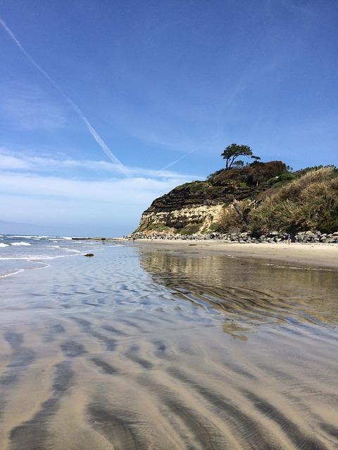 Free san diego beach beach ocean california water sand