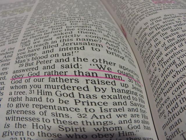 Free Photos: Bible god's word faith christian   aimeeimbeau