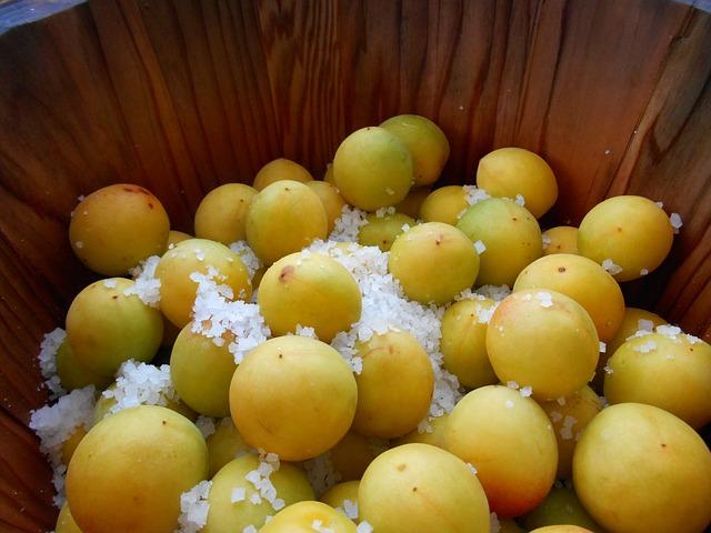 Free plum dried plum japan japanese food