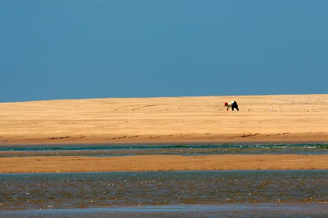 Free beach sand dune water person indian ocean natal