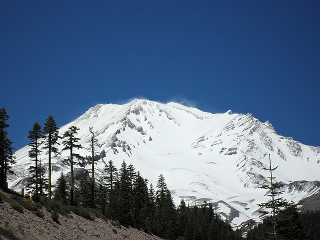 Free mount shasta mountain trees landscape natural peak