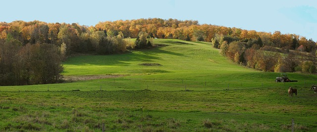 Free vermont meadow fall field country view seasonal
