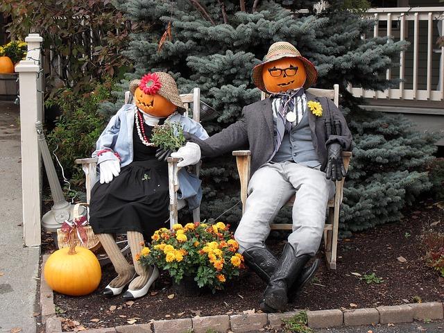 Free pumpkin jack-o-lantern fall outdoor humor