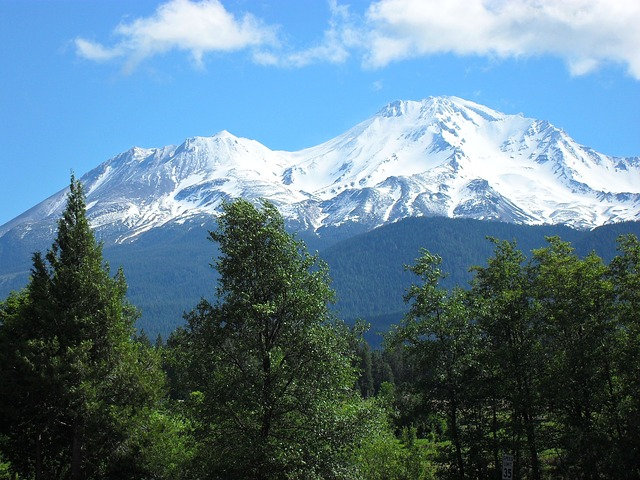 Free mount shasta trees blue green landscape mountain