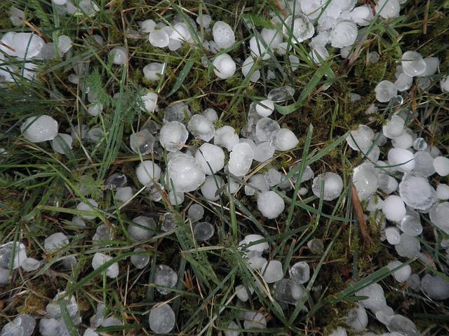 Free hail hailstones weather storm precipitate grass