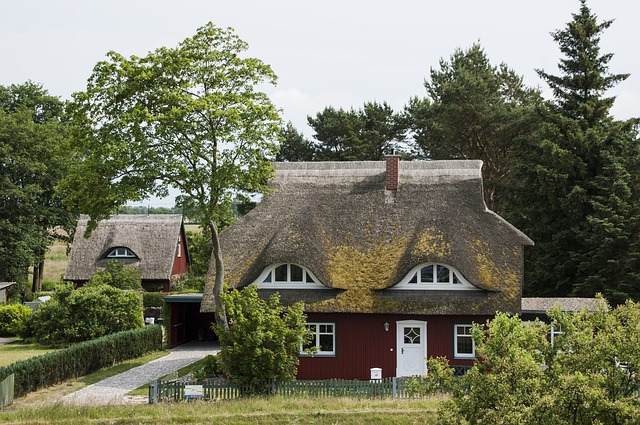 Free thatched roof reed home northern germany