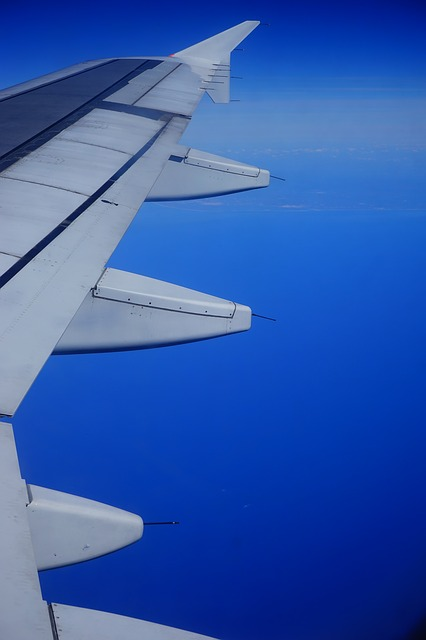Free aircraft wing empennage fly sky blue