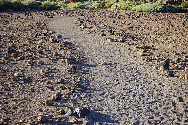 Free away path trace migratory path trail tenerife