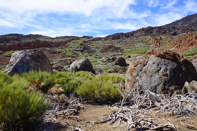 Free Photos: Lava rock basalt trail path teide | Hans Braxmeier