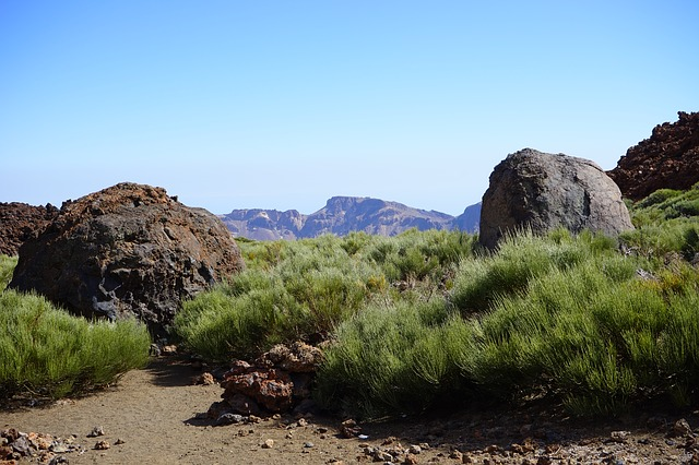 Free lava rock basalt trail path teide