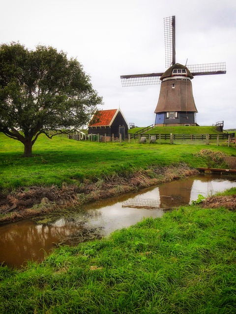 Free netherlands windmill canal stream trees grass