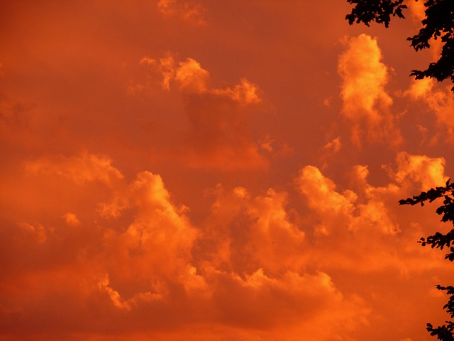 Free Photos:                sunset red sky clouds orange mood evening | Stefan Hoffmann