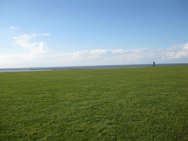 Free dike meadow horizon grass north sea sea watts