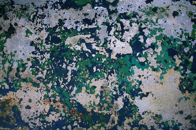 Free weathered paint concrete old texture grunge wall