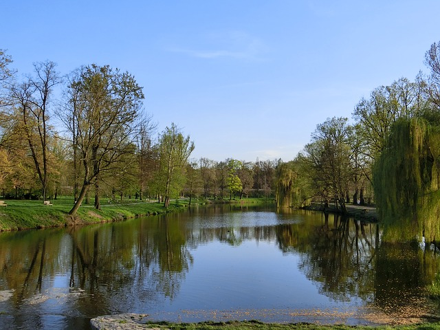 Free landscape water sky trees pond see