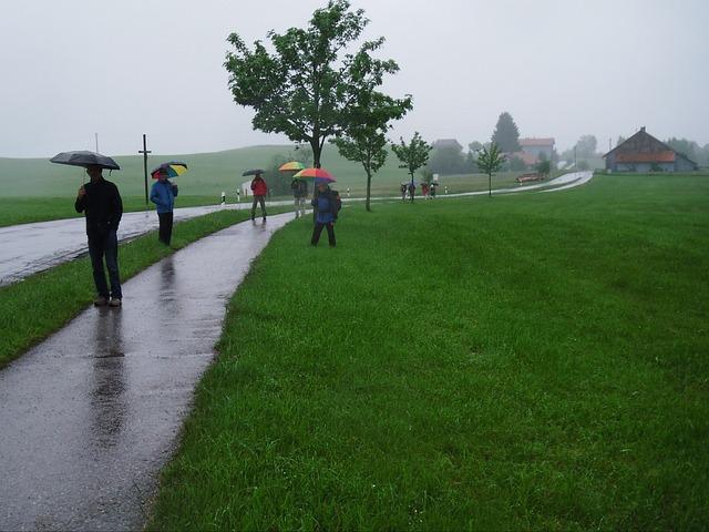 Free wanderer rain umbrella fog sidewalk landscape