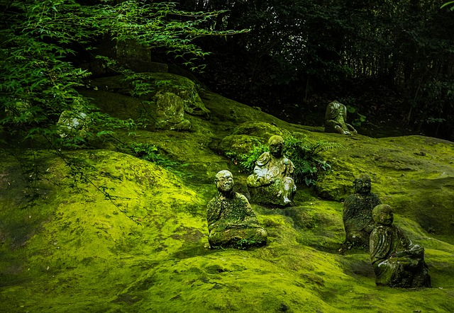 Free japan buddha statue buddha buddhism statue asia