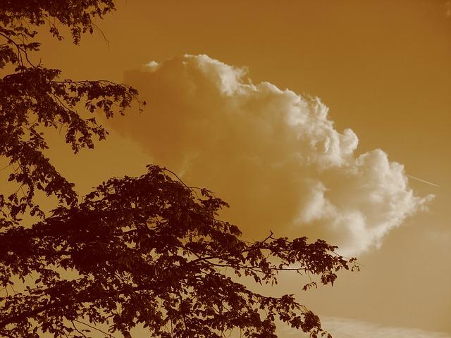 Free cloud sky clouds form clouds abendstimmung