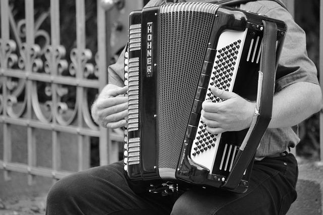 Free accordion musical instrument keyboard instrument