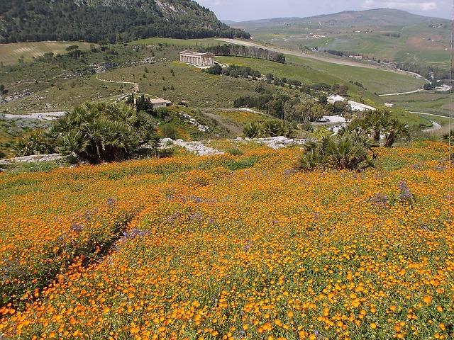 Free sicily temple sea of flowers landscape