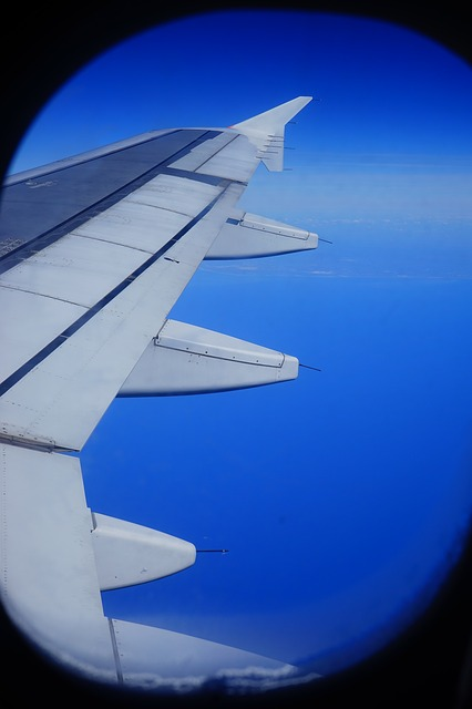 Free fly aircraft wing sea blue ocean