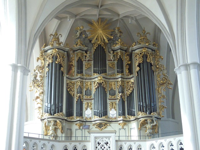 Free berlin church church organ organ