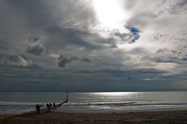 Free seascape beach sunlight